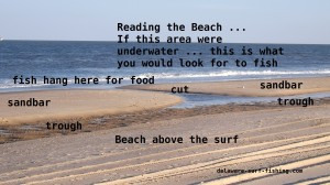 the point, cape henlopen state park, reading the surf, delaware surf fishing, dsf