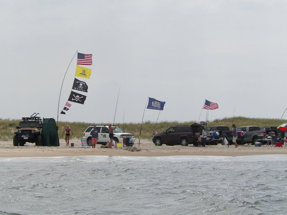 Dsf wants to grow we just need your support delaware for Delaware surf fishing