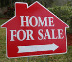 Real Estate advice, delaware, sussex county, LSD