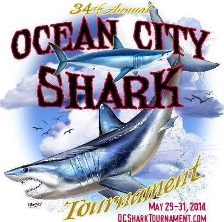 Ocean City Shark Tournament 2014