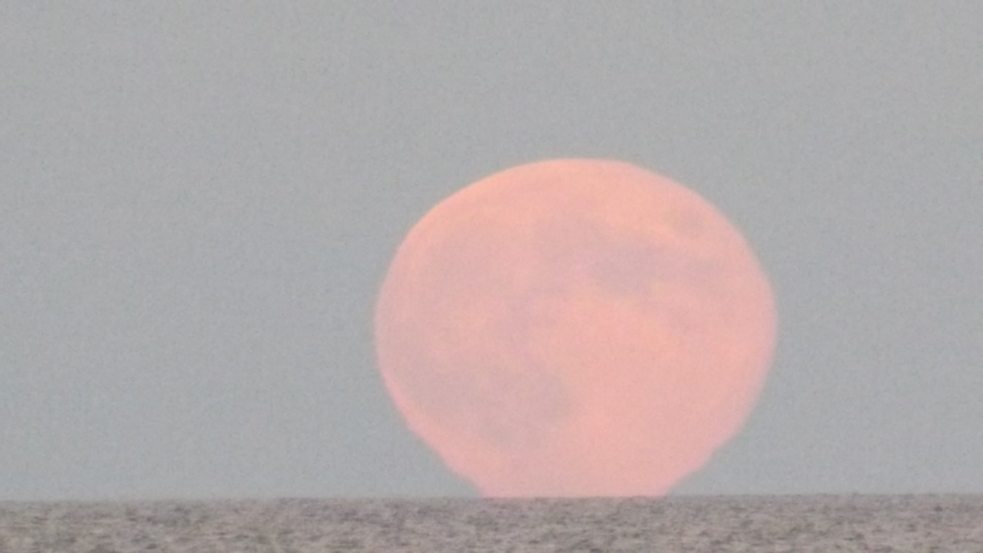 Full Pink Moon 2014, blood moon,