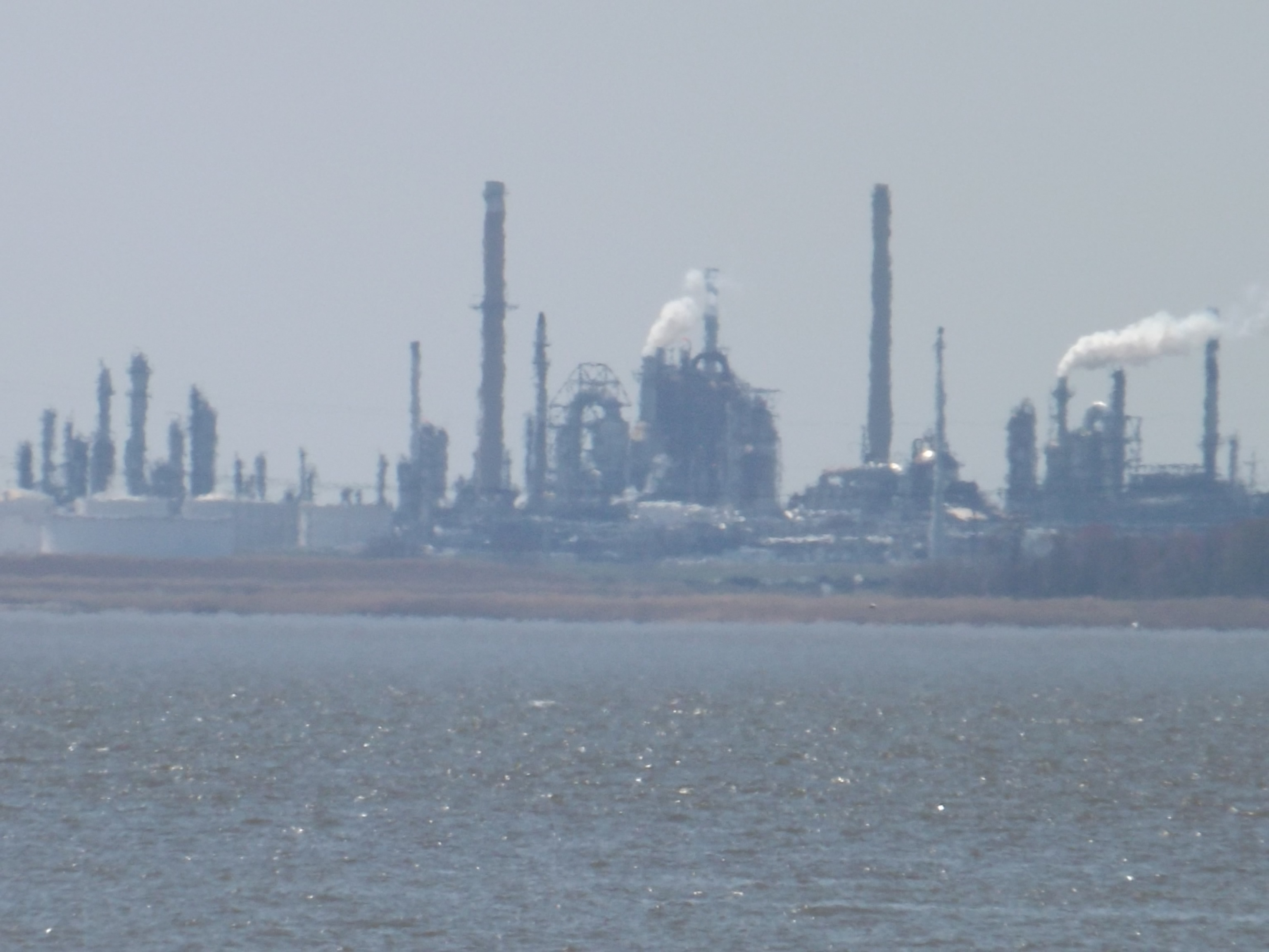 delaware city refinery, battery park, delaware river, delaware bay, fish kills, polluted water, clean water act