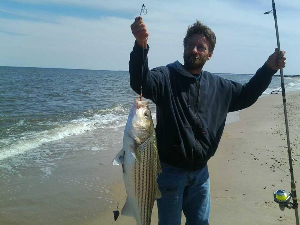 Striped bass action is heating up in delaware for Surf fishing for stripers