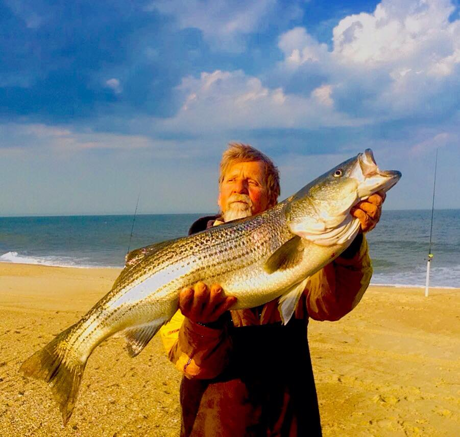 striped bass, rockfish, indian riverinlet, north beach, jetty jockey, delaware, sussex county, delmarvelous, clam,
