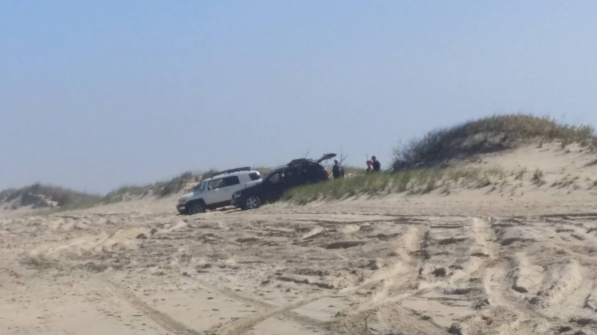 dune issues, surf fishing, stayout of the dunes, delaware seashore state park
