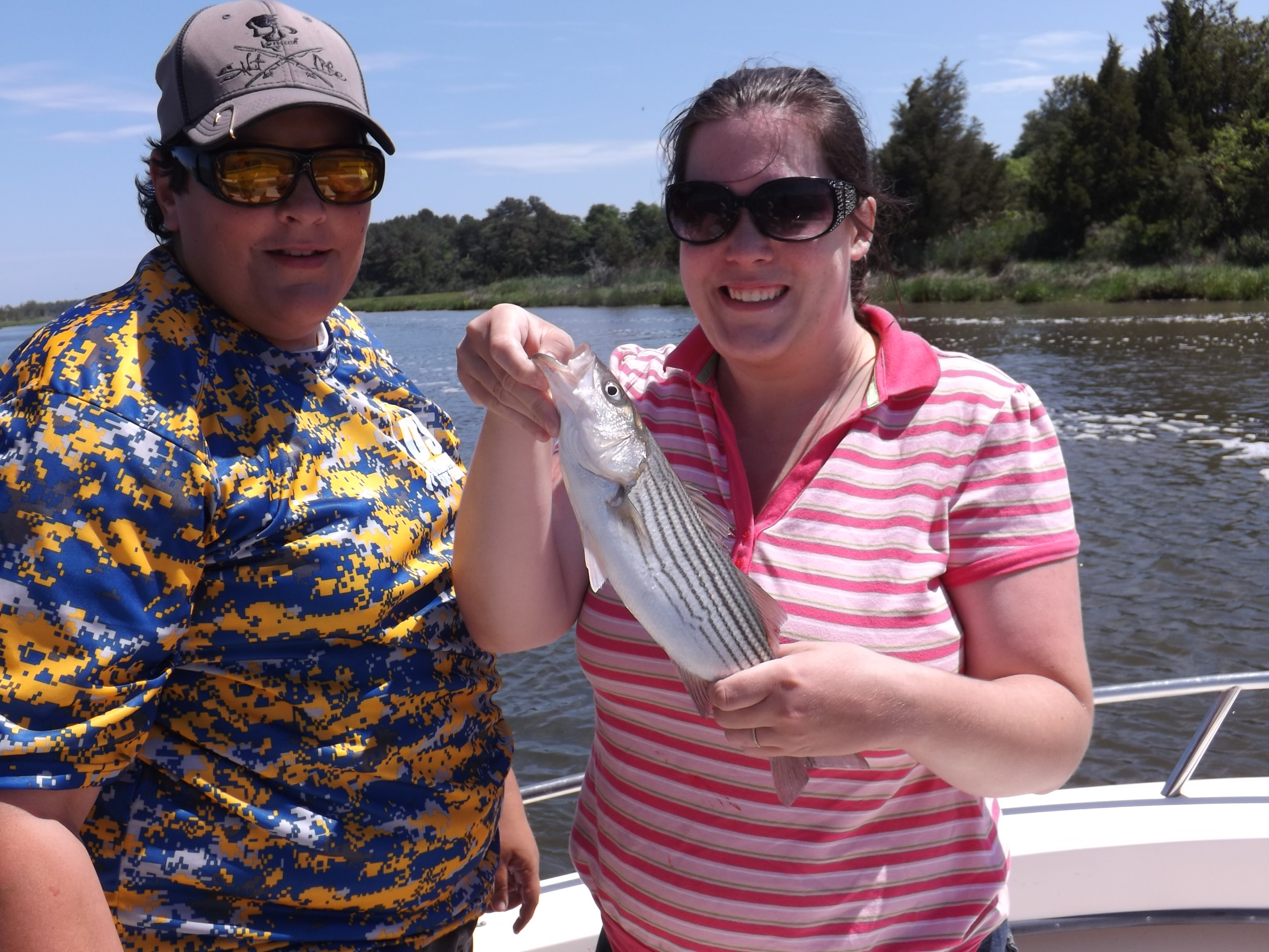 striped bass, lewes canal. diamond state tackle, delaware, sussex county