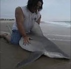 Taylor Thornton, sitting on the sand bar shark