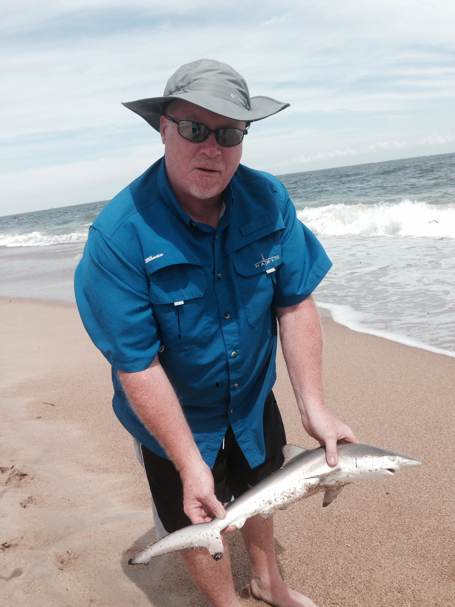 black tip shark, delaware, sussex county, LBSF, surf fihsing for sharks in delaware, atlantic ocean fish,