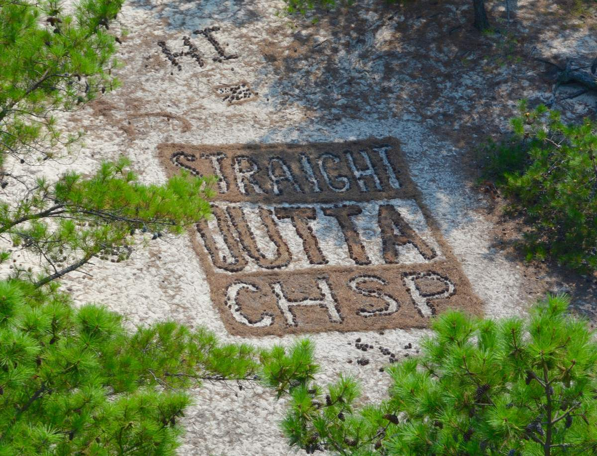 tower art, straight out of, cape henlopen state park, ghost towers, firewatch towers,
