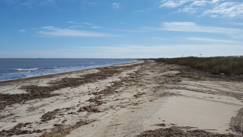 BPI, beach plum island state park, delaware, sussex county, broadkill beach