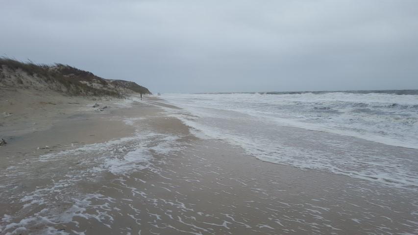 Drive on beaches in cape henlopen open for Cape henlopen fishing report