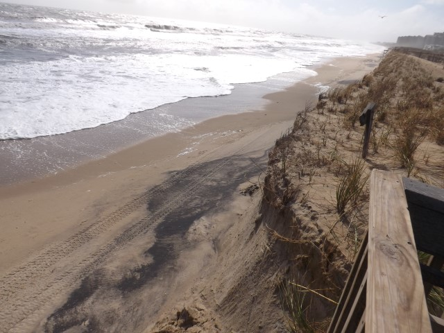 dune cliff, bethany beach, delaware, sussex county, noreaster 2015, beach erosion