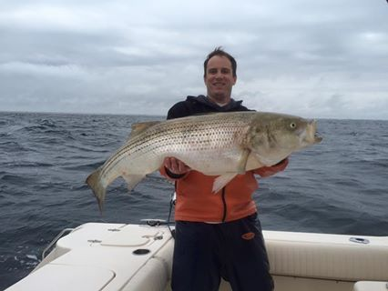 striped bass, seaside heights, new jersey, delaware, sussex county, fall migration, rockfish, rock the rocks, linesider, bunker spoons