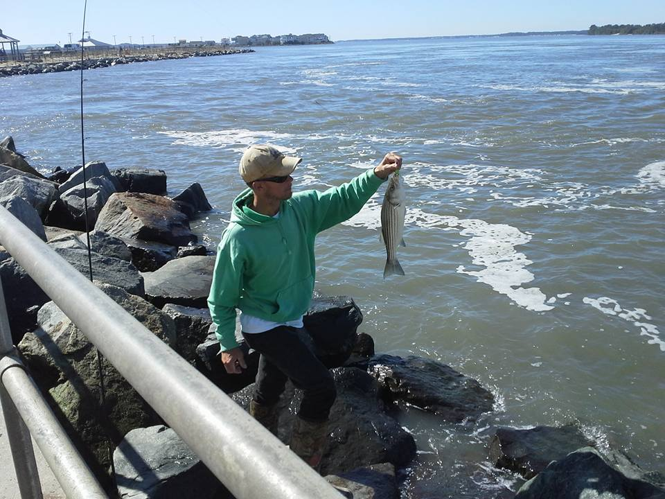 beach conditions and fishing report delaware surf