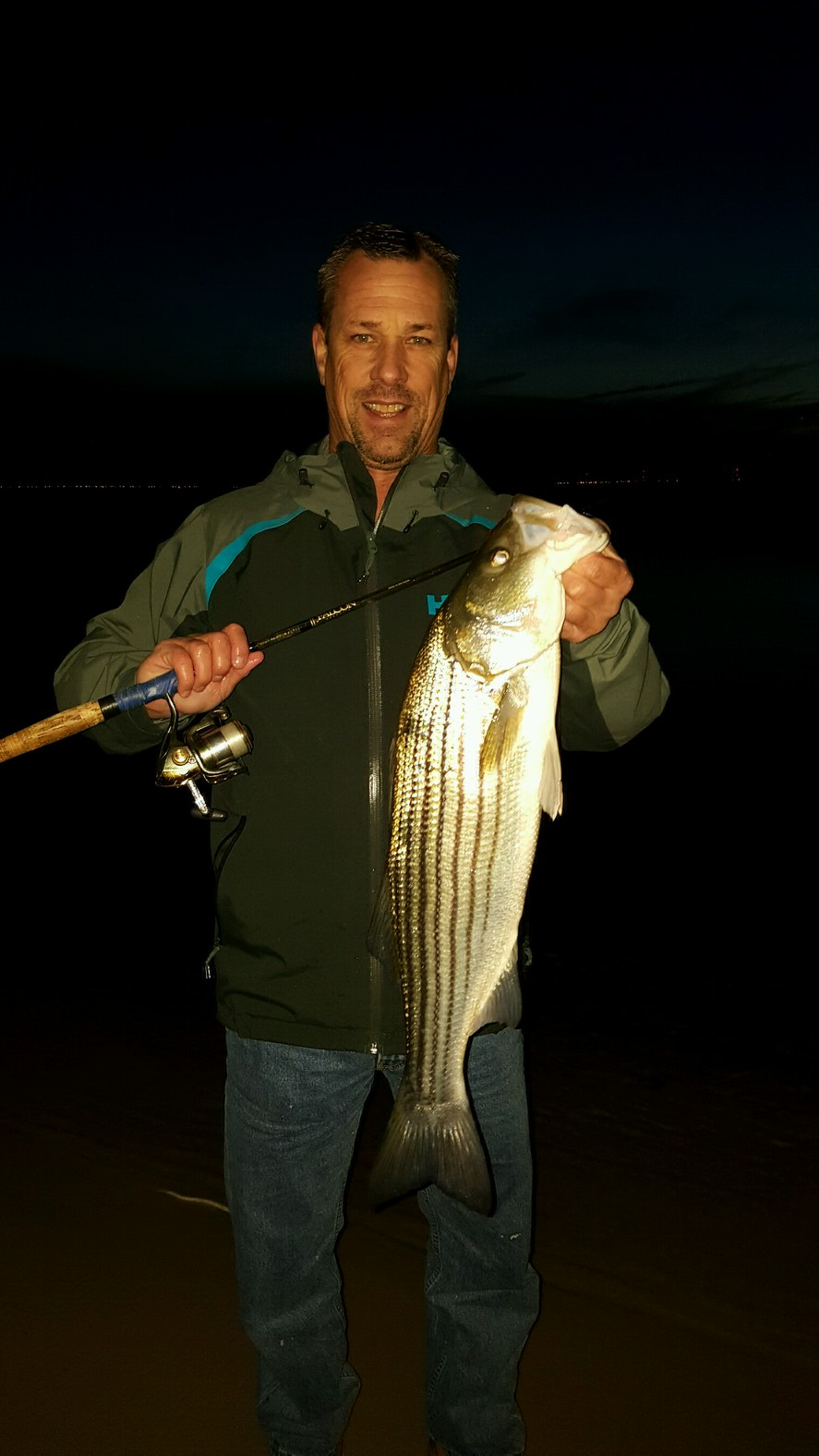striped bass, inland bays, rockfish,