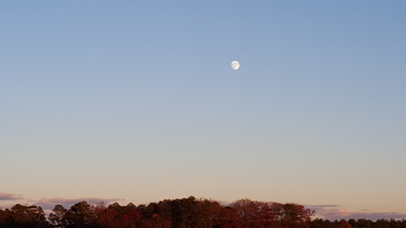 beaver moon, hunters moon,frosty moon, november full moon, 2015, delaware, sussex county