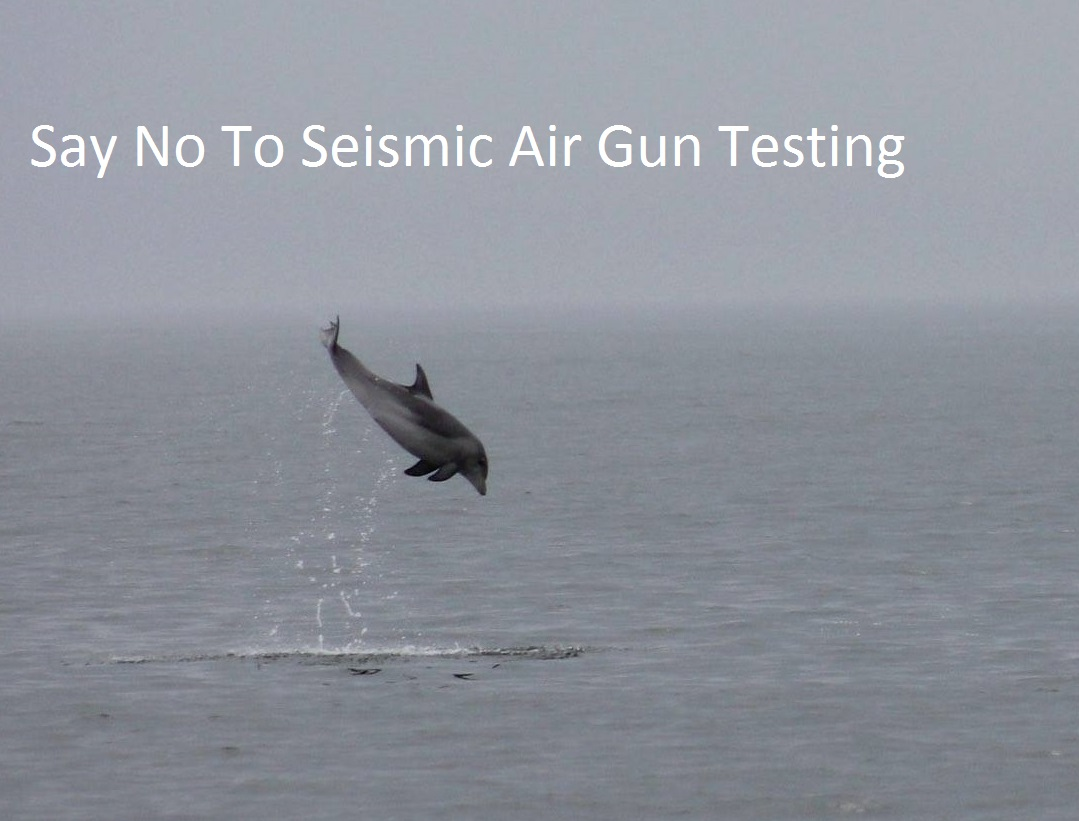 seismic air gun testing, BOEM, bureau of ocean energy management, delaware, sussex county, kent county, new castle county