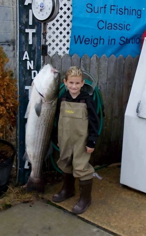 sam adams, striped bass, new jersey, striped bass, rockfish