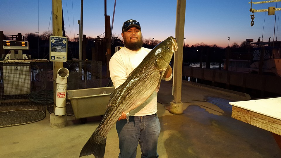 Fishing the good the bad and the ugly delaware surf for Dnrec fishing report