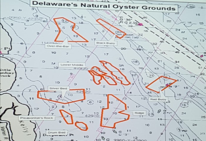 Delaware advisory council on shellfisheries sets 2016 for Dnrec fishing report