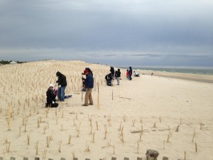 Southern Delaware Jeep Club planting beach grass at conquest beach.... photo by Chris Buczkowski