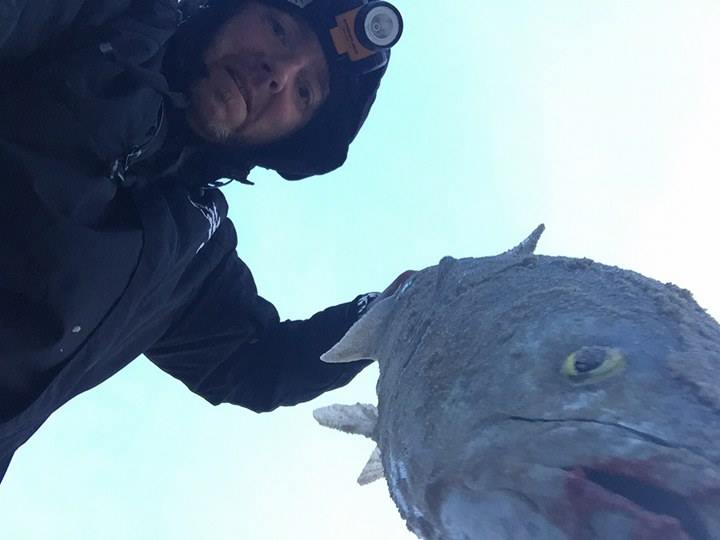 bluefish, lewes beach, delaware, sussex county, mullet rigs, bunker chunks, spoons, top water action, delaware bay