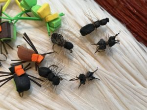 fly tying, ants, bugs, fly fishing, delaware, sussex county,