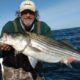 striped bass, chesapeake, structure fishing, joe yack,